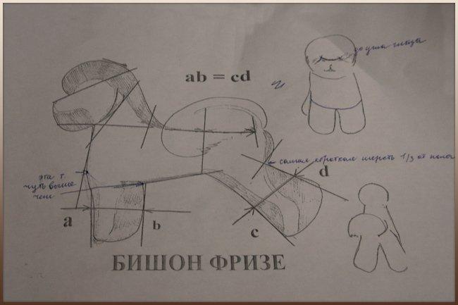 Схема стрижки бишон-фризе